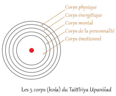 5Corps