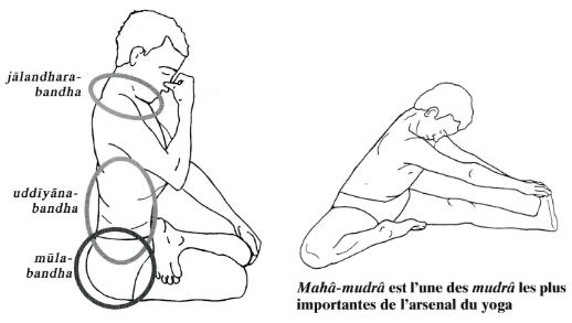 BandhaMudra