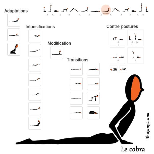CobraIllustration